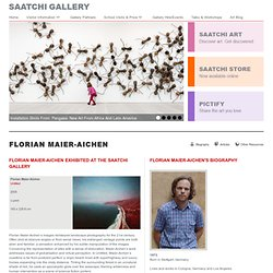 Florian Maier-Aichen - Artwork - The Saatchi Gallery
