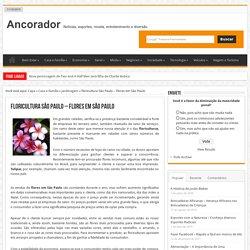 Floricultura São Paulo - Flores em São Paulo