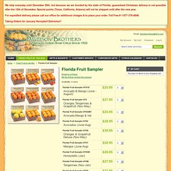Indian River Fruit / Florida Fruit Sampler - Davidson Brothers