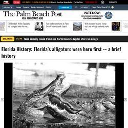 Florida History: Florida's alligators were here first