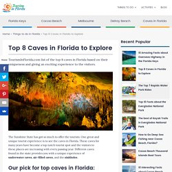 Top 8 Caves in Florida to Explore - TourismInFlorida.com