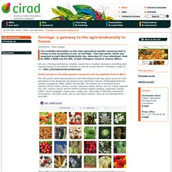 Florilège: a gateway to the agro-biodiversity in France