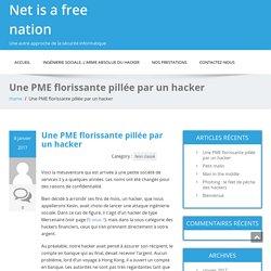 Une PME florissante pillée par un hacker - Net is a free nation