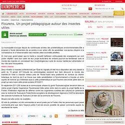 Flourens. Un projet pédagogique autour des insectes utiles - Haute-Garonne