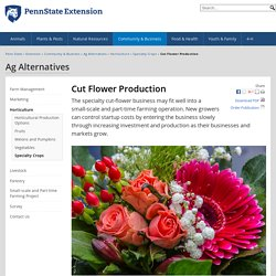 Cut Flower Production — Ag Alternatives