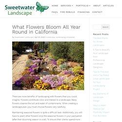 Best Landscaping Companies Near Windsor