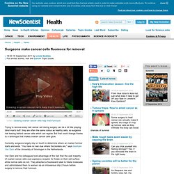 Surgeons make cancer cells fluoresce for removal - health - 18 September 2011