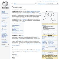 EN_WIKIPEDIA - Fluxapyroxad.