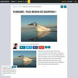 Flyboard : plus besoin de dauphins !