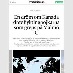 En dröm om Kanada drev flyktingpojkarna som greps på Malmö C