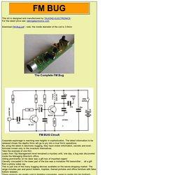 FM Bug