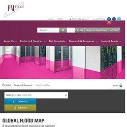 FM Global Flood Map