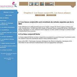 Histologie: les tissus - Niveau PAES