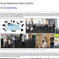 Foam Walkalong Glider Feedback