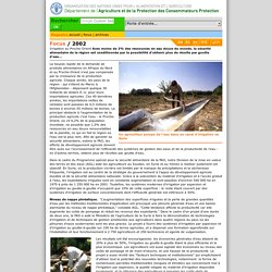 Focus: Irrigation au Proche-Orient