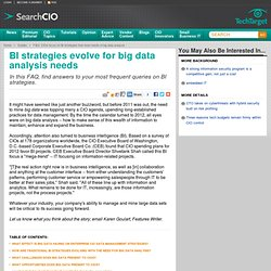 FAQ: CIOs focus on BI strategies that meet needs of big data analysis
