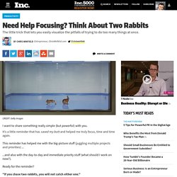 Need Help Focusing? Think About Two Rabbits