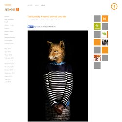foerstel : creative + results » fashionably dressed animal portraits