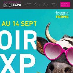 Foire-expo à Douai
