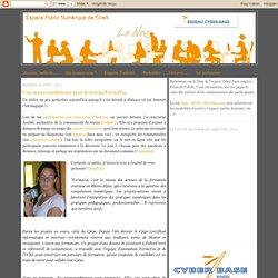 Une micro-conférence pour le réseau FormaVia