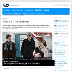 EINSHOCH6 Folge 38 – Im Tierheim