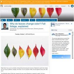Why do leaves change color? Fall foliage, explained - City of Spokane, Washington