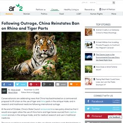 Following Outrage, China Reinstates Ban On Rhino And Tiger Parts