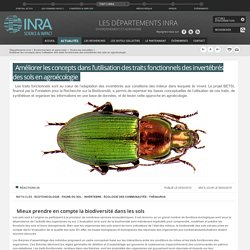 INRA 06/02/15 Améliorer les concepts dans l'utilisation des traits fonctionnels des invertébrés des sols en agroécologie