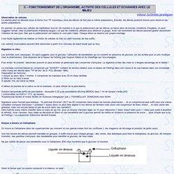 FONCTIONNEMENT DE L'ORGANISME ACTIVITE DES CELLULES