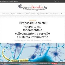 L'impossibile esiste: scoperto un fondamentale collegamento tra cervello e sistema immunitario