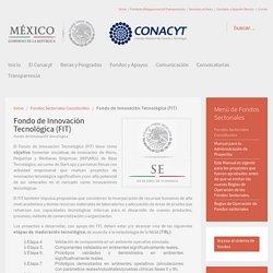 Fondo de Innovación Tecnológica (FIT)