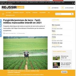 REUSSIR 30/10/20 Fongicide/pommes de terre : l'anti-mildiou mancozèbe interdit en 2021