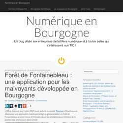 Forêt de Fontainebleau : une application pour les malvoyants développée en Bo...