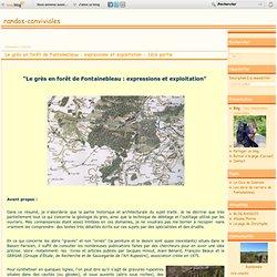 Le grès en forêt de Fontainebleau : expressions et exploitation - 1ère partie - Nos randonnées conviviales