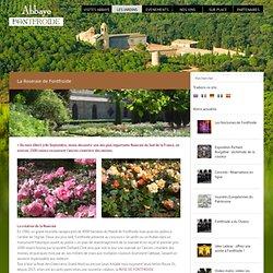 Abbaye de Fontfroide – Narbonne – Aude La Roseraie - Abbaye de Fontfroide - Narbonne - Aude