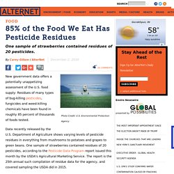 85% of the Food We Eat Has Pesticide Residues
