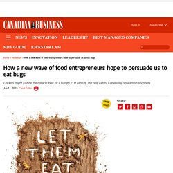 How food entrepreneurs hope to persuade us to eat bugs