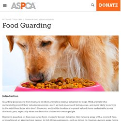 Food Guarding