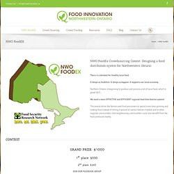 Food Innovation Project – NWO FoodEX
