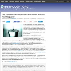 The Forbidden Secrets of Water: How Water Can Raise Your Frequency