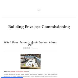 What Does Forensic Architecture Firms Do?