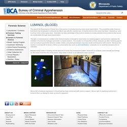 Forensic Science - Luminol (Blood)