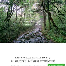 Forest bathing / Shinrin-Yoku — Accueil