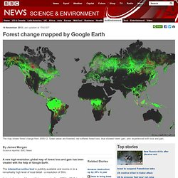 Forest change mapped by Google Earth