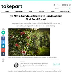 It's Not a Fairytale: Seattle to Build Nation's First Food Forest | TakePart - News, Culture, Videos and Photos That Make the World Better