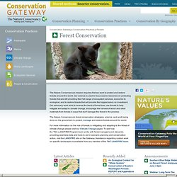 Forest Conservation | Conservation Gateway