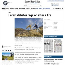 Forest debates rage on after a fire