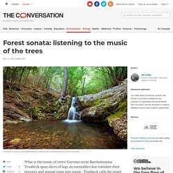 Forest sonata: listening to the music of the trees