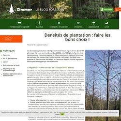 Blog forestier - Zimmer - Densités de plantation : faire les bons choix !