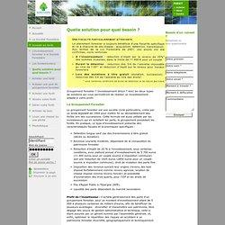 Société Forestière - diagnostic paysager, coupe de bois, domaine forestier, fiscalite forestiere...
